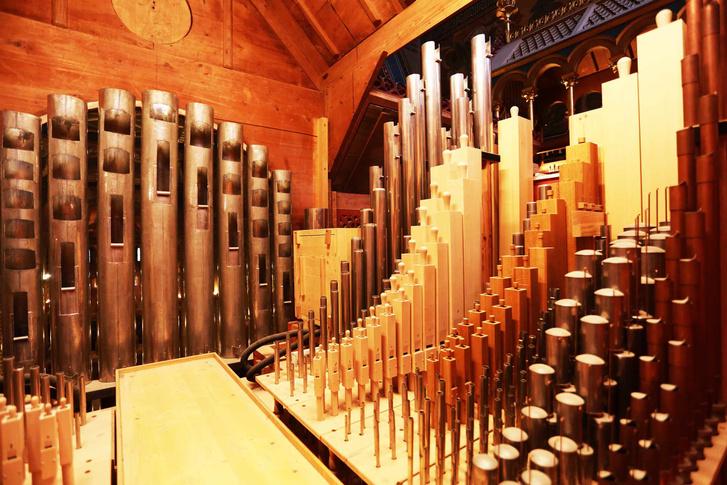 Filharmonia Orgonabelso