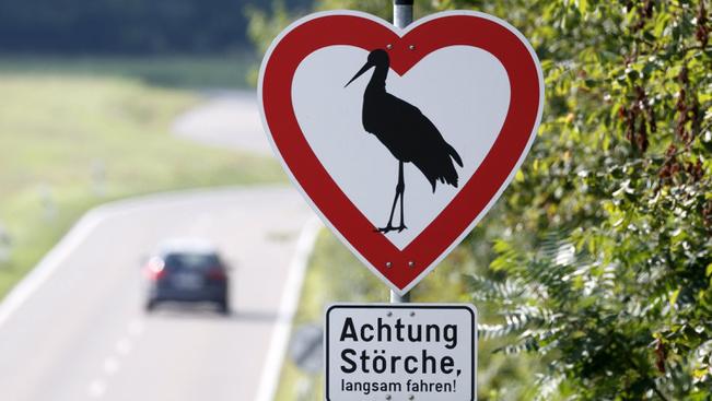 Szív alakú útjelzőtáblával intik a gólyák miatti óvatosságra a német autósokat