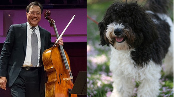 Yo-Yo Ma arra kérte a közönségét, hogy keressék meg a karmester kutyáját