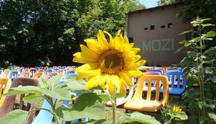 Egy kertmozi még belefér a nyárba