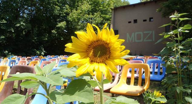 Egy kertmozit még érdemes beiktatni a nyári programba