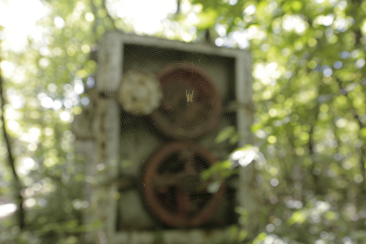 A lemezmegmunkáló gép fogaskerekeit nézegeti szabadidejében egy pók.
