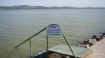 Holttestet találták a Velencei-tóban