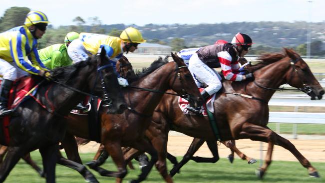 Keszthelyen is elrajtolnak a lovak augusztus 20-án