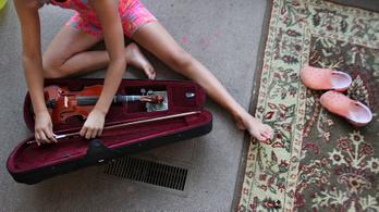 Elítélték a diáklányt, aki savat öntött osztálytársa mélyhegedűtokjába
