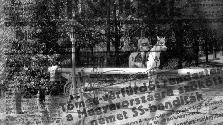 Pótnyomozás 70 év után: tömeggyilkosság a Pilisben
