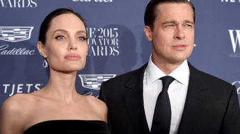 170 millió forint kifizetésére ítéle a bíróság a Pitt-Jolie házaspárt