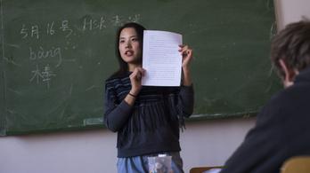 Cégekhez kerül a nyelvi felzárkóztatásra szánt uniós pénz kétharmada
