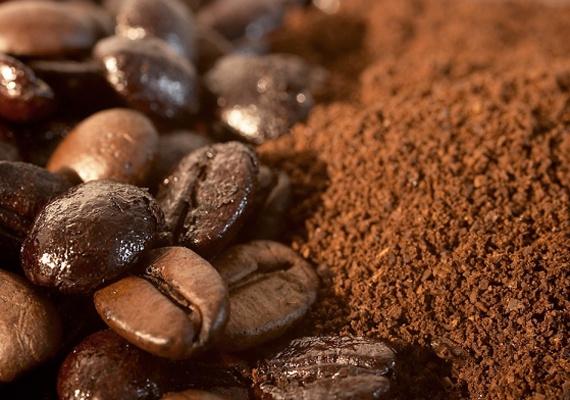 kave zacc