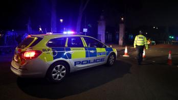 Rendőrökre támadt egy férfi a Buckingham-palotánál