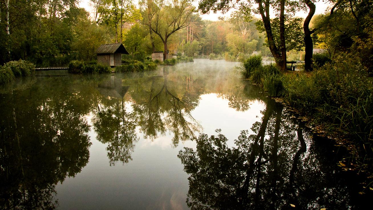 631a7f647c Aprócska, vadregényes tó Budapest mellett: ősszel a legszebb a színes  lombok között