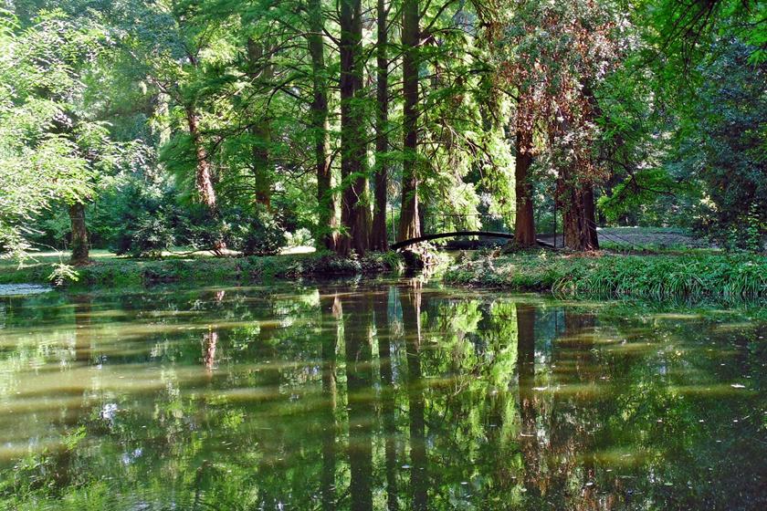szabadkigyos wenckheim kastely kastelypark