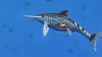 A valaha talált legnagyobb halgyík került elő
