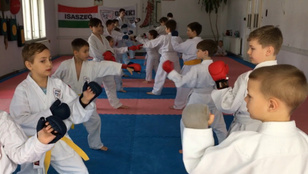 A karate nem csak mozgás, de szellemi fejlődés is.