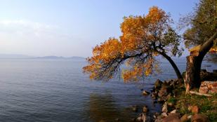 Ősszel is van egy csomó jóság a Balatonon