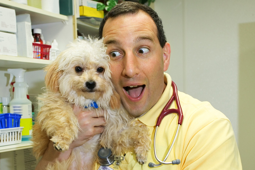 Az orvosi rendelő kiírásán nevet az internet: vicces kedvében volt a doktor