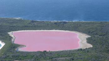 A rózsaszín tó rejtélye