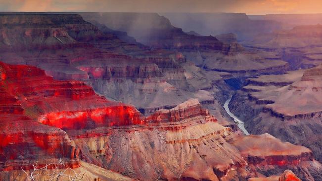 Önkéntesekkel lövetik ki a bölényeket a Grand Canyonban