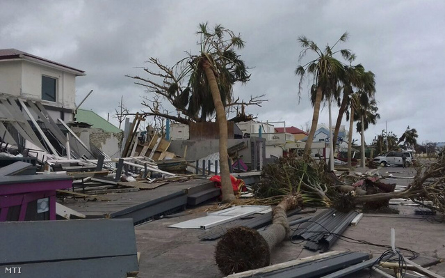 Irma Floridában