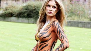 Két bimbótapasszal, egy bugyival és testfestéssel küzd a tigrisjogokért