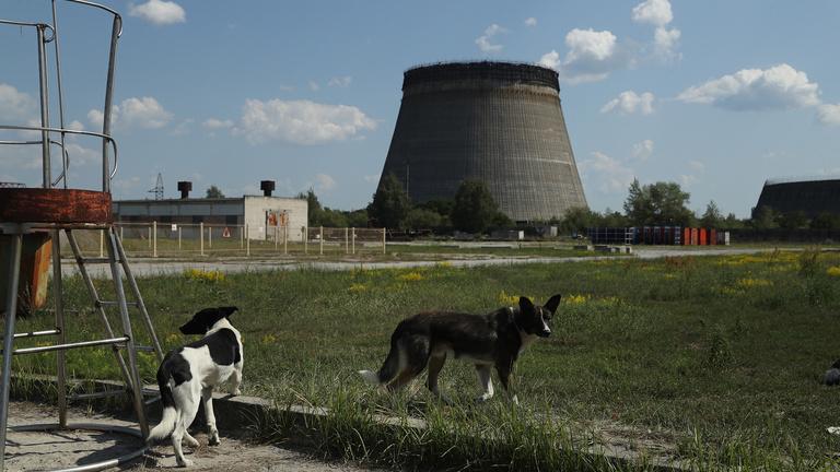 Újra lesz erőmű Csernobilban