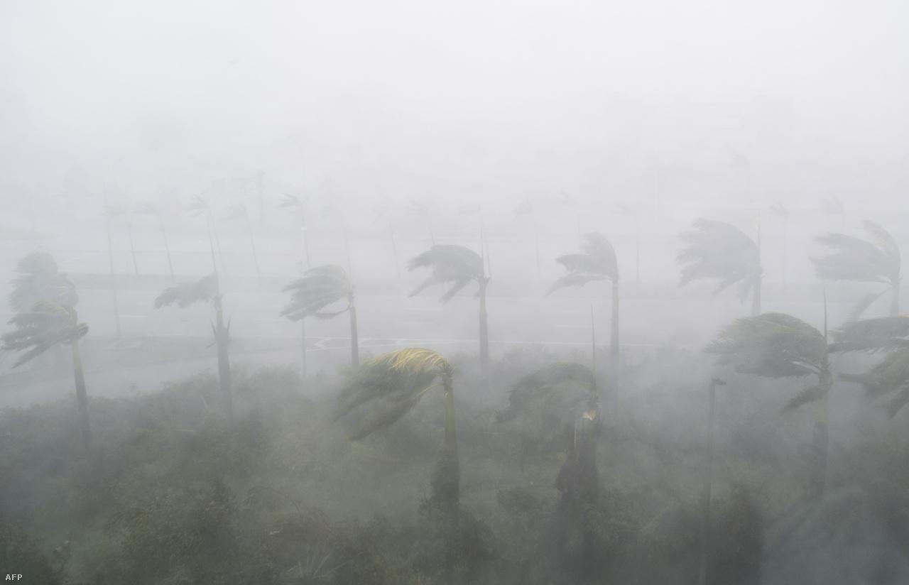 Irma nyomában mindenhol jókora pusztítást hagyott maga után, miközben tíz nap alatt a Zöld-foki Köztársaságtól végül már meggyengülve elért Georgiáig. A Karibi-térségben letarolta a britek, a franciák és a hollandok tengerentúli területeit is.
