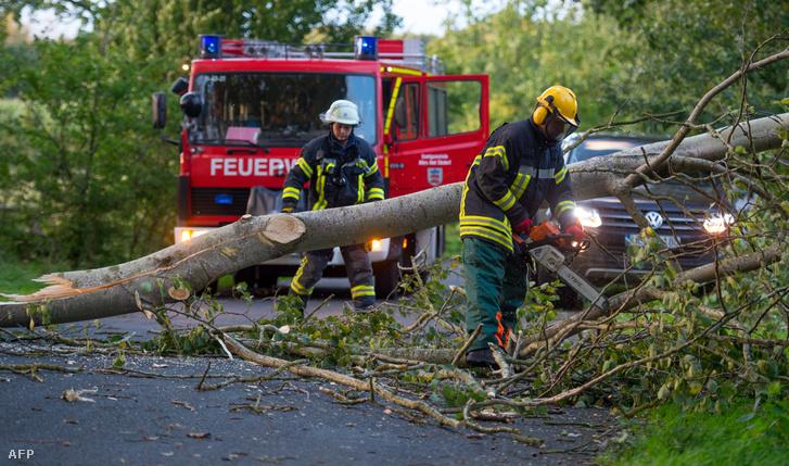 Kidőlt fát távolítanak el egy útról Ebstorfban