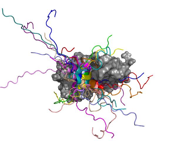 A több mint 30 gén átíródását szabályozó GCN4 transzkripciós faktor (színessel ábrázolva) kapcsolódása a mediátor transzkripciós koaktivátor (Med15, szürkével ábrázolva) alegységéhez. A GCN4 középső része hélix konformációt vesz fel, mely több pozícióban jelenik meg a komplexben. A hélixet szegélyező részek azonban mozgékonyak maradnak, dinamikájuk csökkentése pedig az aktivitást is kedvezőtlenül érinti.