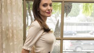Angelina Jolie nem számít arra, hogy kedvelik, vagy megértik