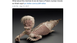 Atombomba vs. T.rex vs. gumicsizma