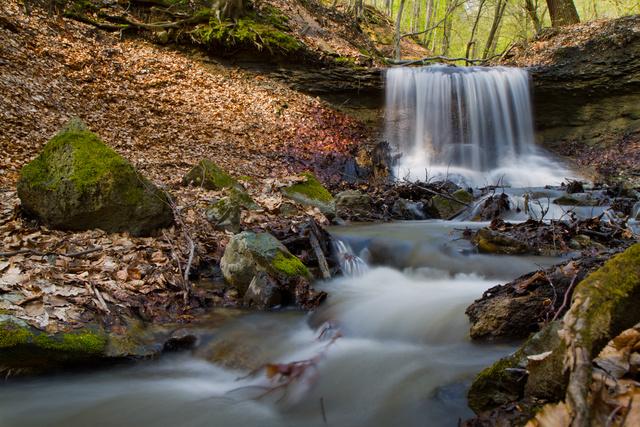 A Gortva-patak fokozottan védett völgye a Medves-fennsík oldalában