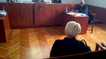 Hamis tanúzás miatt bíróság előtt a romagyilkosságok koronatanúja