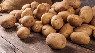 Vajon életben maradnánk, ha csak krumplit ehetnénk?