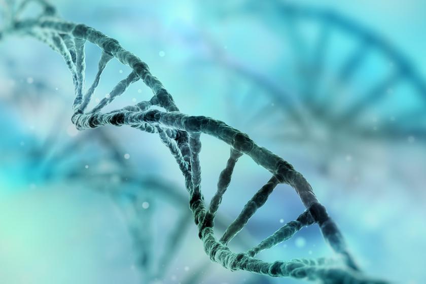 Így befolyásolják a gyerekkori hatások a DNS-t: meghökkentő, amit a kutatók mondanak