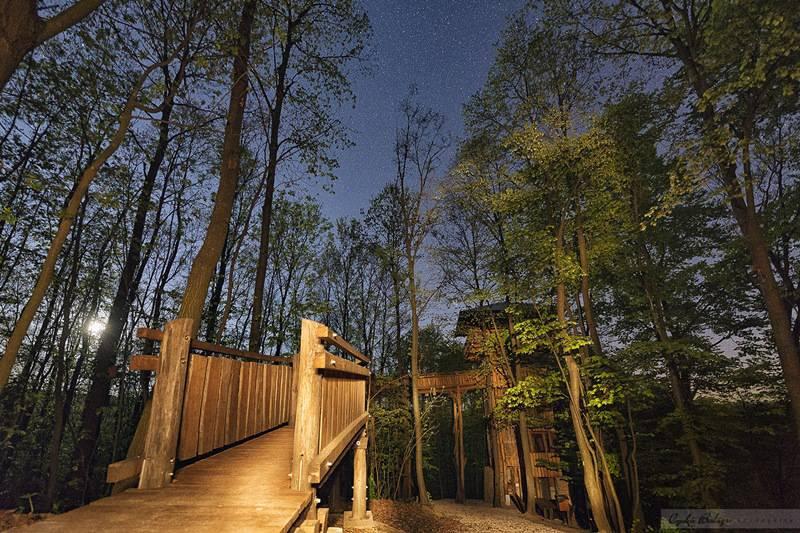A legjobb hazai lombkorona-ösvények, ahova nincs belépő