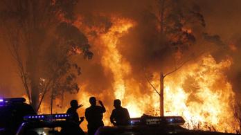 Már 30 halottja van a portugál és spanyol erdőtüzeknek