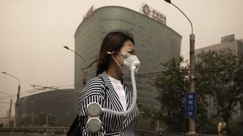 A környezetszennyezés a legnagyobb gyilkos