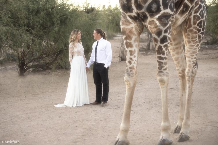 Ez az Out of Africa Wildlife Park az USA-ban, Arizona államban.