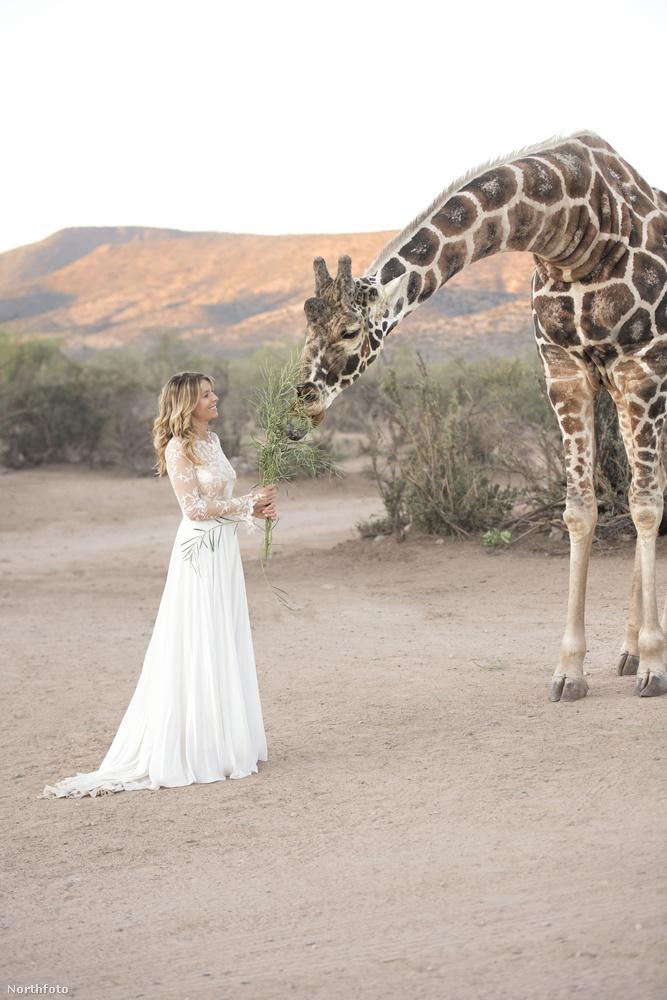 Ő Courtney Palmer, a menyasszony, 36 éves