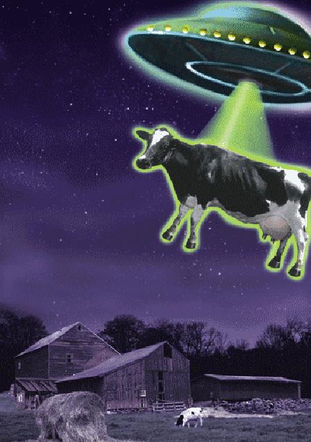 fotoIllo UFO cow.gif