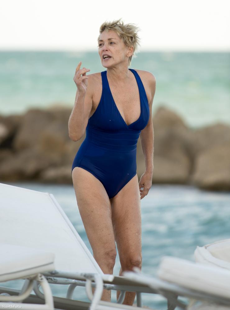 Sharon Stone volt már az elmúlt időszakban felismerhetetlen is...