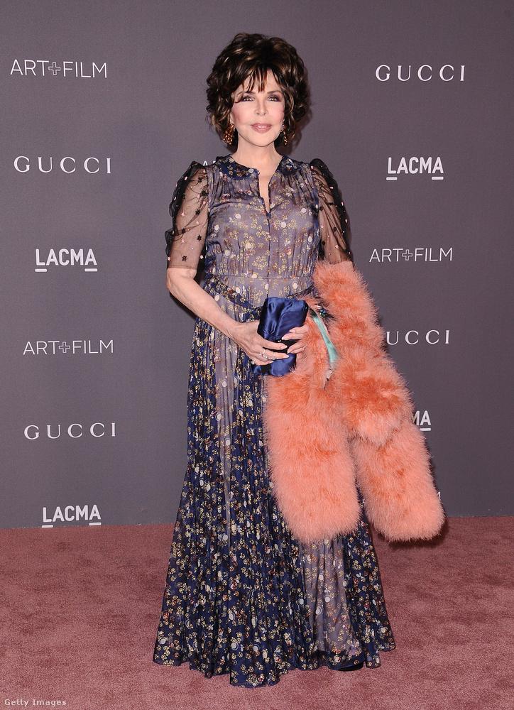 Pink bundával kombinálta hercegnős estélyi ruháját a 70 éves dalszövegírónő, Carole Bayer Sager.