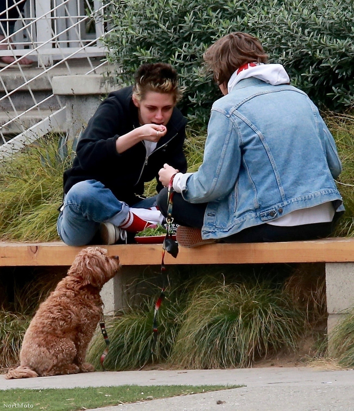 Kristen Stewart egy padon ült és evettUgye mekkora szenzáció? Pedig csak annyi történt, hogy a színésznő sétált egyet Katy Perry aszissztensével, aztán a kutyasétáltatással egybekötött beszélgetést egy padon ülve, ebédelve folytatták.