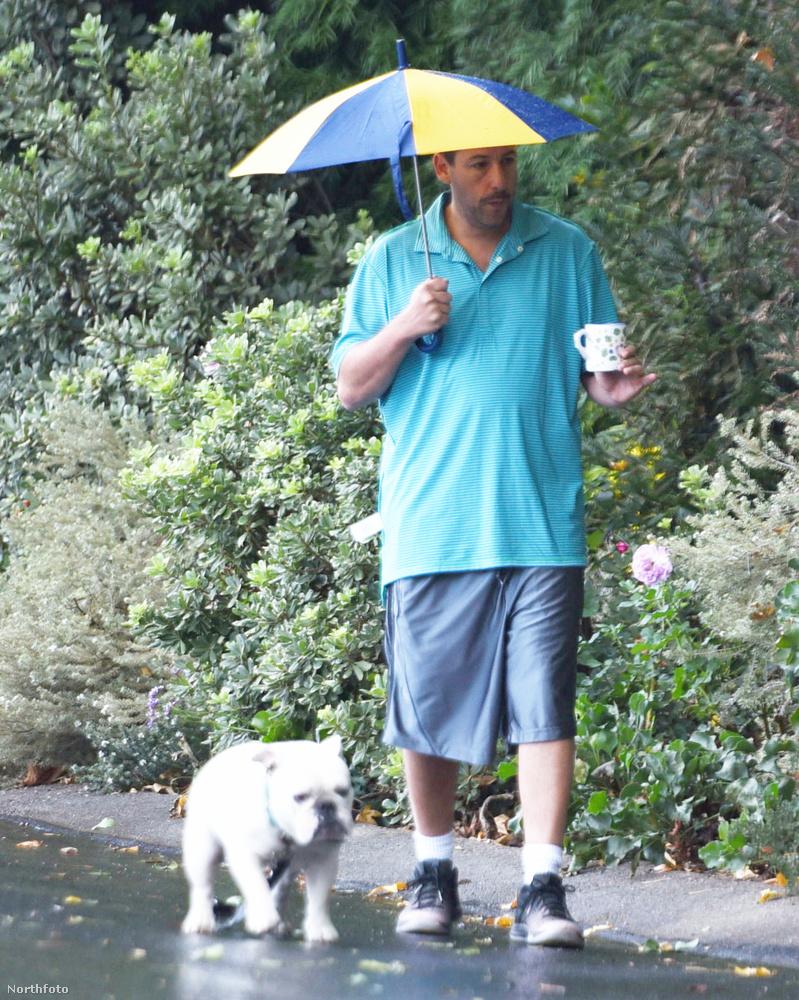 PRÉMIUM EXKLUZÍV!Adam Sandler kutyát sétáltat az esőbenMit lehetne még erről írni? Bokrok mentén, szemerkélő esőben, meg-megázva, közben kávét szürcsölve, a kutyát póráz nélkül tartva rótta az utcát a hollywoodi szupersztár, színész, humorista?Ezek voltak azok a szenzációs képsorozatok, amikről majdnem lemaradtak