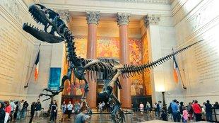 10 izgalmas múzeum gyerekeknek