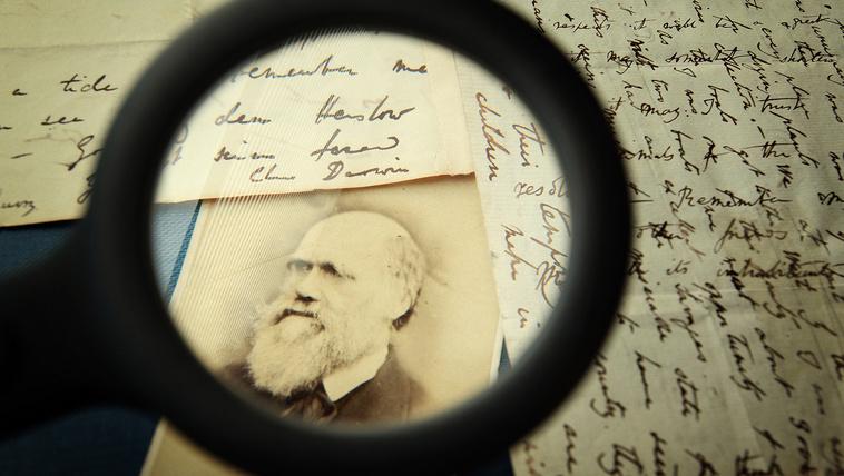 A fajok eredetébe Darwin Istent is belevette