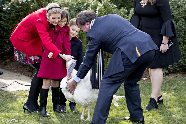 Ivanka a Hálaadás előtt elnöki kegyelemben részesített pulykák oldalán pávázott.