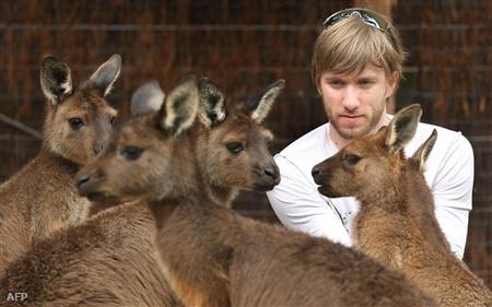 Melbourne-ben Nick Heidfeld szerdán még kengurukat simogatott
