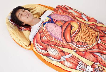anatómiahalozsak