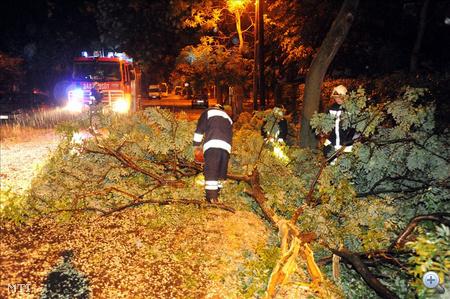 Tűzoltók a letört faágaktól tisztítják meg Budapest XIX. kerületében a Baross utcát, az éjszaka átvonult vihar után